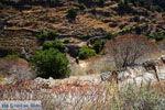 Bergpad-wandelpad naar Karthaia   Kato Meria   Kea (Tzia) 15 - Foto van De Griekse Gids