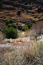 GriechenlandWeb Bergpad-wandelpad naar Karthaia | Kato Meria | Kea (Tzia) 16 - Foto GriechenlandWeb.de
