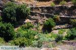 Bergpad-wandelpad naar Karthaia | Kato Meria | Kea (Tzia) 22 - Foto van De Griekse Gids