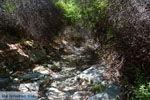 Bergpad-wandelpad naar Karthaia | Kato Meria | Kea (Tzia) 24 - Foto van De Griekse Gids