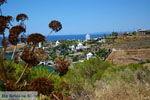 GriechenlandWeb.de Koundouros | Kea (Tzia) | GriechenlandWeb.de foto 22 - Foto GriechenlandWeb.de