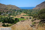 Pisses | Kea (Tzia) | De Griekse Gids foto 14 - Foto van De Griekse Gids