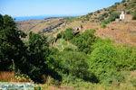 Ioulida (Ioulis of Chora) | Kea (Tzia) | De Griekse Gids foto 53 - Foto van De Griekse Gids