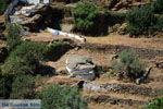Ioulida (Ioulis of Chora) | Kea (Tzia) | De Griekse Gids foto 58 - Foto van De Griekse Gids
