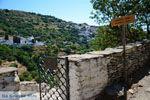 Ioulida (Ioulis of Chora) | Kea (Tzia) | De Griekse Gids foto 61 - Foto van De Griekse Gids