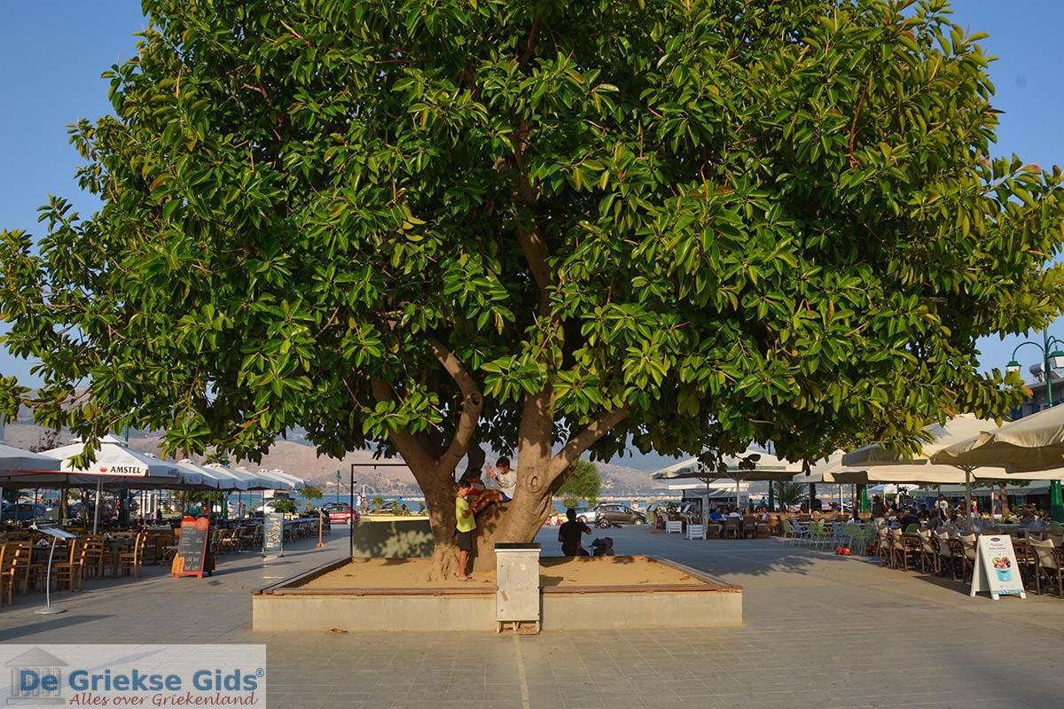 foto Lixouri Kefalonia - De Griekse Gids photo 25