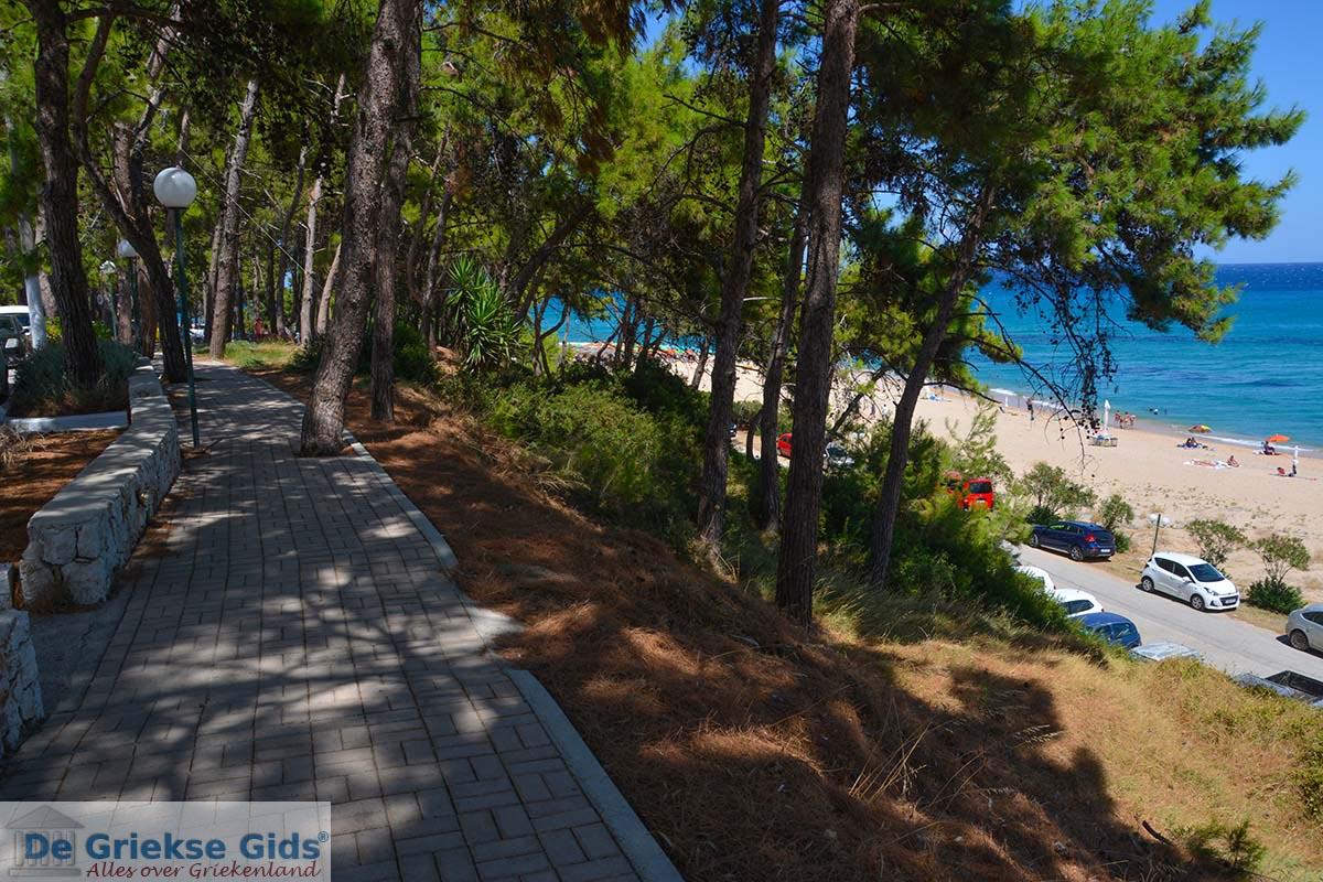 foto Skala Kefalonia - De Griekse Gids photo 17
