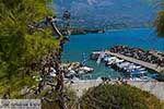 Pesada Kefalonia - De Griekse Gids photo 10 - Foto van De Griekse Gids