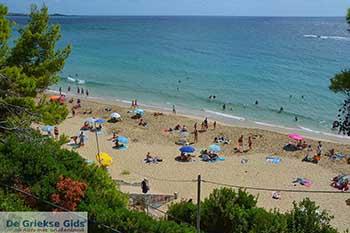 Makris Gialos strand in Lassi Kefalonia - De Griekse Gids photo 7 - Foto van https://www.grieksegids.nl/fotos/kefalonia/350pix/lassi-kefalonia-007.jpg