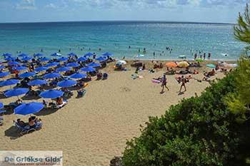 Makris Gialos strand in Lassi Kefalonia - De Griekse Gids photo 9 - Foto van https://www.grieksegids.nl/fotos/kefalonia/350pix/lassi-kefalonia-009.jpg