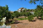 GriechenlandWeb.de Psathi Kimolos | Kykladen Griechenland | foto 75 - Foto GriechenlandWeb.de