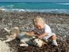 Griekse hond - Foto van Marcel