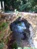 Voor de waterval van Mylopotamos (Kythira) - Foto van Dick & Joke