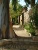 Kambos - Chios Egeische eilanden - - Foto van Dick & Joke