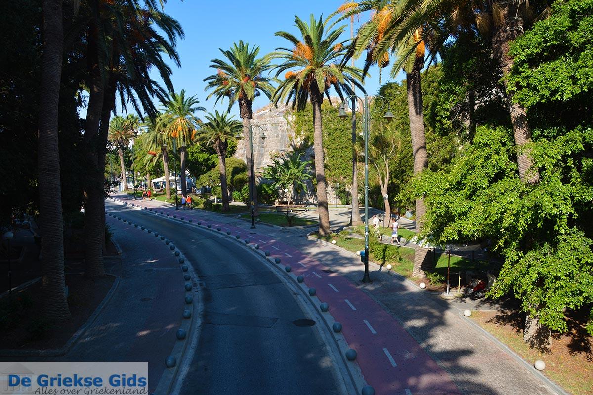 foto Kos stad - Eiland Kos - Griekse Gids  - Palmbomenlaan in Kos-stad