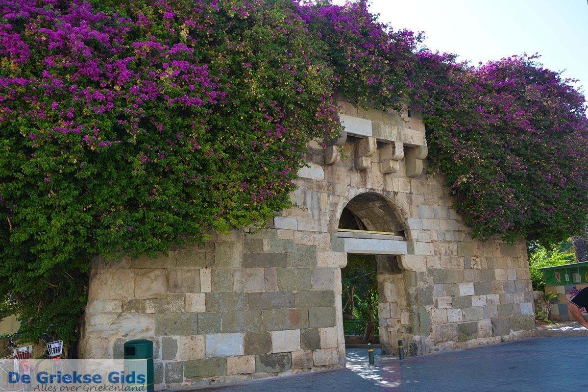 foto Kos stad - Eiland Kos - Griekse Gids - Muur met bloemen, bougainville in Kos stad