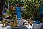 Kos stad - Eiland Kos - Griekse Gids Foto 4 - Foto van De Griekse Gids