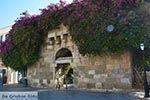 Kos stad - Eiland Kos - Griekse Gids Foto 45 - Foto van De Griekse Gids