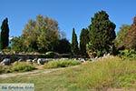 Kos stad - Eiland Kos - Griekse Gids Foto 47 - Foto van De Griekse Gids