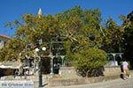 Kos stad - Eiland Kos - Griekse Gids Foto 50 - Foto van De Griekse Gids
