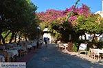 Kos stad - Eiland Kos - Griekse Gids Foto 94 - Foto van De Griekse Gids