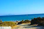 Markos beach - Eiland Kos -  Foto 3 - Foto van De Griekse Gids