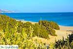 Markos beach - Eiland Kos -  Foto 14 - Foto van De Griekse Gids