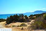 Markos beach - Eiland Kos -  Foto 34 - Foto van De Griekse Gids