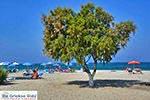 Mastichari Kos - Eiland Kos foto 22 - Foto van De Griekse Gids