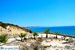 Paradise beach - Eiland Kos -  Foto 6 - Foto van De Griekse Gids