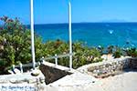 Paradise beach - Eiland Kos -  Foto 19 - Foto van De Griekse Gids
