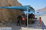 Thermen - Eiland Kos -  Foto 19 - Foto van De Griekse Gids
