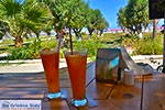 Tigaki Kos - Eiland Kos foto 30 - Foto van De Griekse Gids