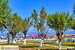Tigaki Kos - Eiland Kos foto 31 - Foto van De Griekse Gids