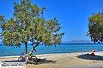 Tigaki Kos - Eiland Kos foto 69 - Foto van De Griekse Gids
