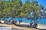 Tigaki Kos - Eiland Kos foto 70 - Foto van De Griekse Gids