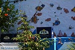Zia - Insel Kos -  Foto 42 - Foto GriechenlandWeb.de