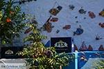 Zia - Eiland Kos -  Foto 42 - Foto van De Griekse Gids