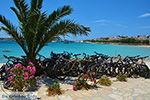 Koufonisi - Eilanden Koufonissia | Cycladen | De Griekse Gids | nr 90 - Foto van De Griekse Gids