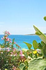 Koufonisi - Eilanden Koufonissia | Cycladen | De Griekse Gids | nr 139 - Foto van De Griekse Gids