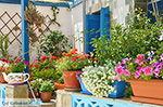 Koufonisi - Eilanden Koufonissia | Cycladen | De Griekse Gids | nr 201 - Foto van De Griekse Gids