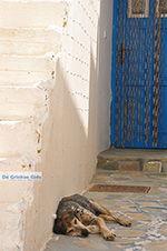 GriechenlandWeb.de Koufonisi - Inselen Koufonissia | Kykladen | GriechenlandWeb.de | nr 212 - Foto GriechenlandWeb.de