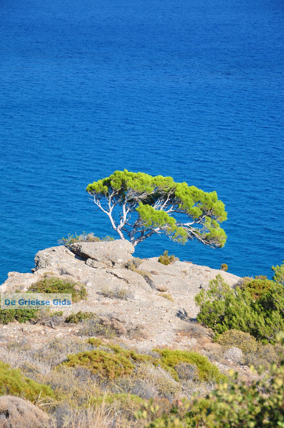 foto Agia Fotia | Lassithi Kreta | Foto 2