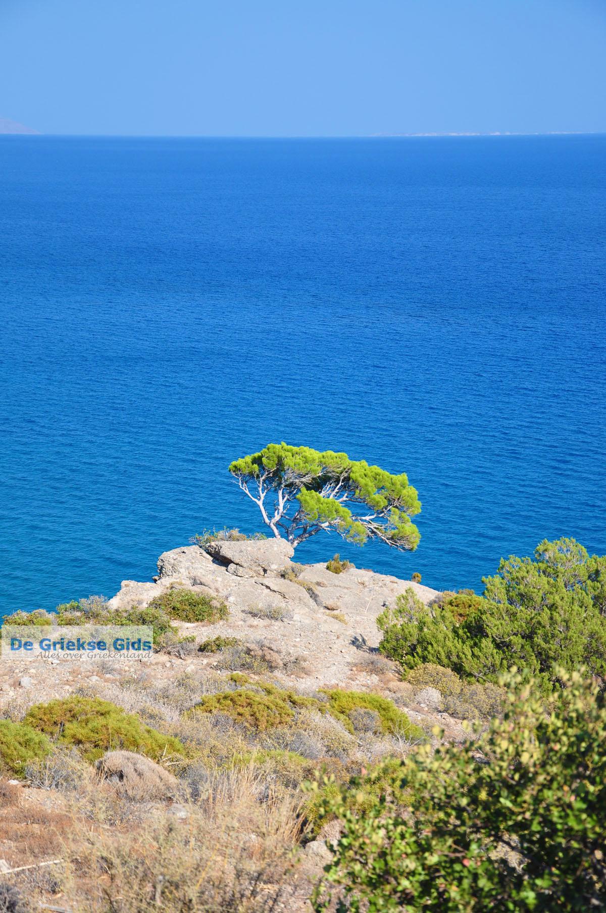 foto Agia Fotia | Lassithi Kreta | Foto 3
