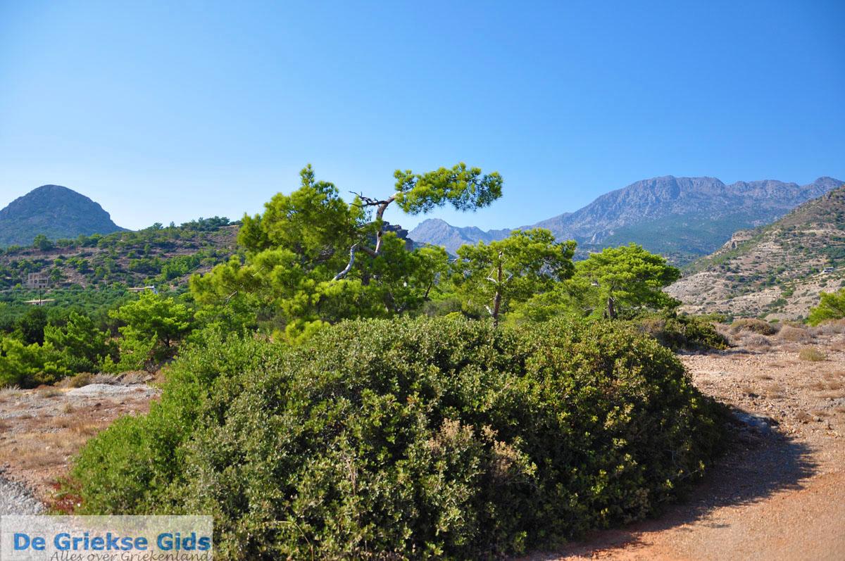 foto Agia Fotia | Lassithi Kreta | Foto 18