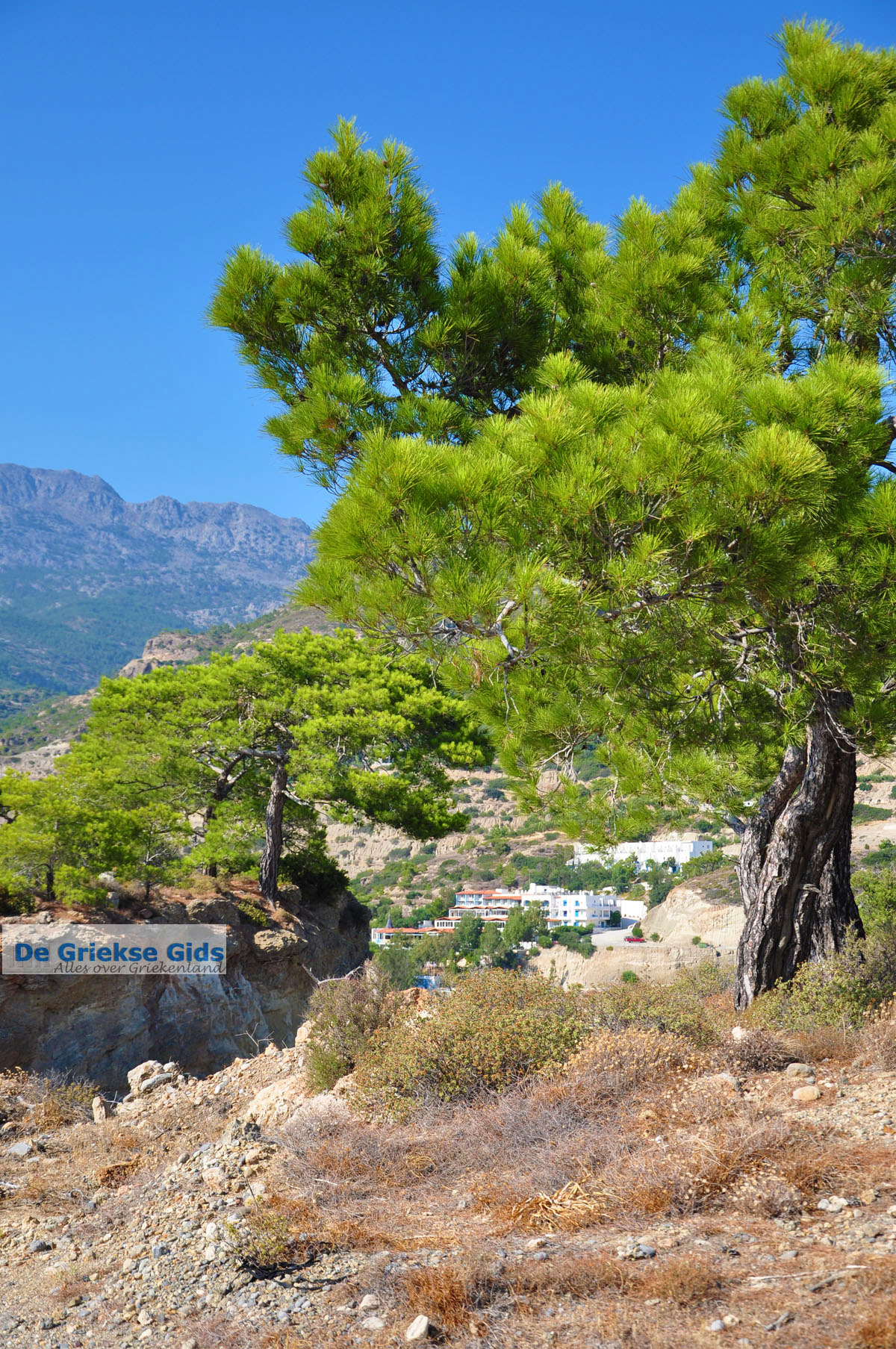 foto Agia Fotia | Lassithi Kreta | Foto 20