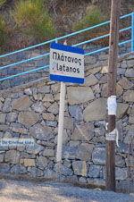 Platanos bij Tholos | Lassithi Kreta | foto 2 - Foto van De Griekse Gids