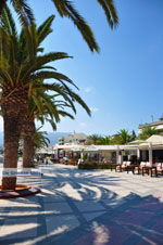 Sitia | Lassithi Kreta | Griekse Gids foto 13 - Foto van De Griekse Gids