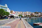 Sitia | Lassithi Kreta | Griekse Gids foto 16 - Foto van De Griekse Gids