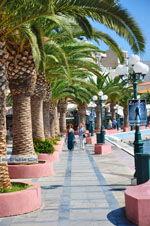 Sitia | Lassithi Kreta | Griekse Gids foto 21 - Foto van De Griekse Gids